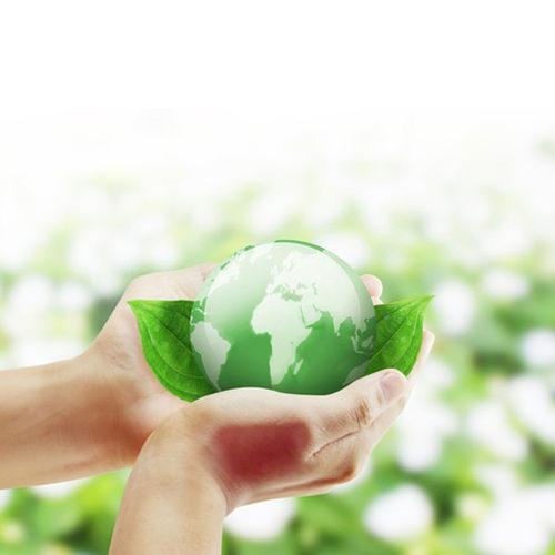 Ökologie & Umwelt